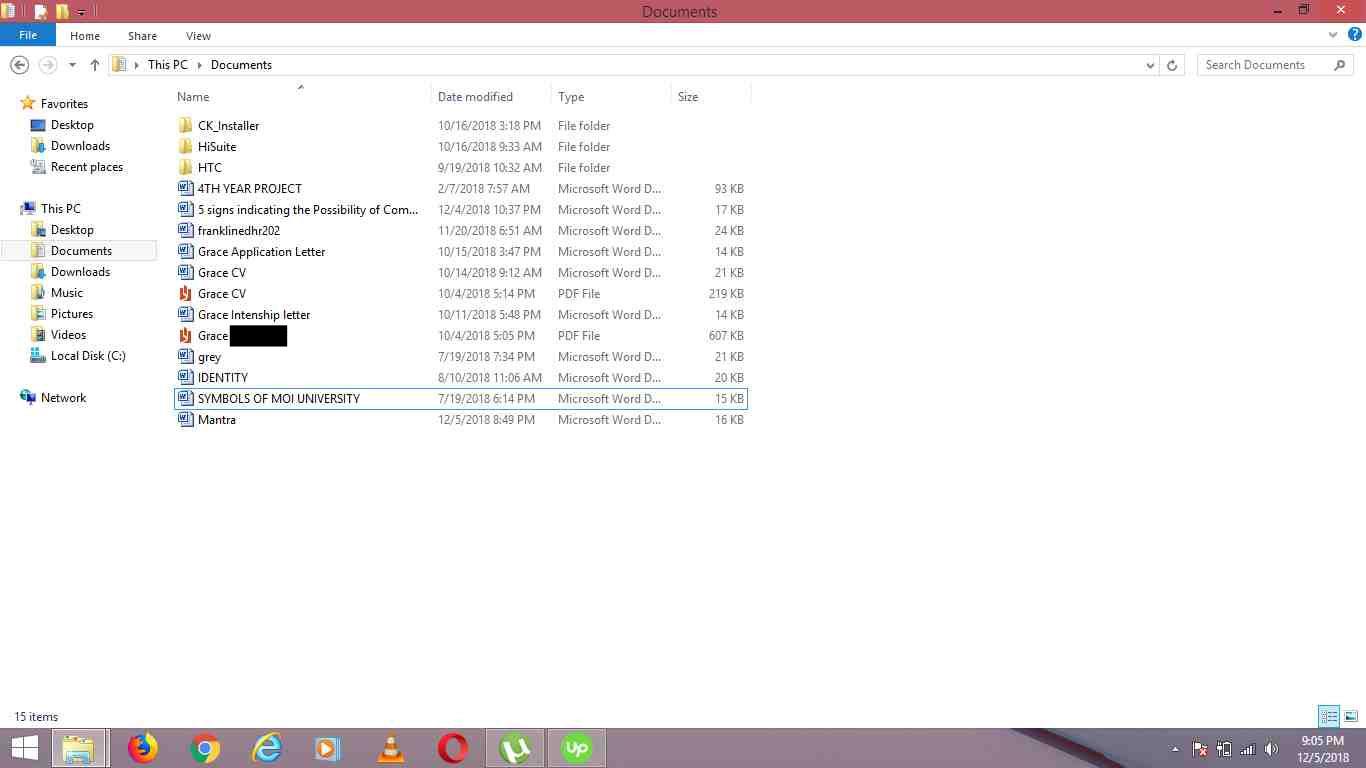 Screenshot of Lizzi's documents folder